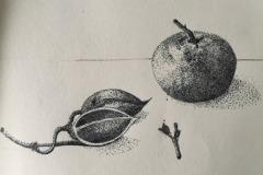 Mandarine-und-Fruchtschale-Kopie